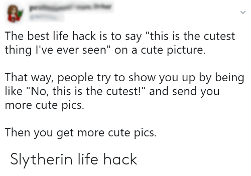 "Best Life Hack: The best life hack is to say ""this is the cutest  thing I've ever seen"" on a cute picture.  That way, people try to show you up by being  like ""No, this is the cutest!"" and send you  more cute pics.  Then you get more cute pics. Slytherin life hack"