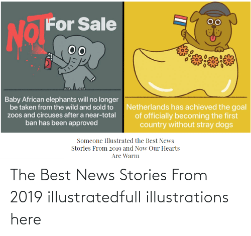 And Now:   The Best News Stories From 2019 illustratedfull illustrations here