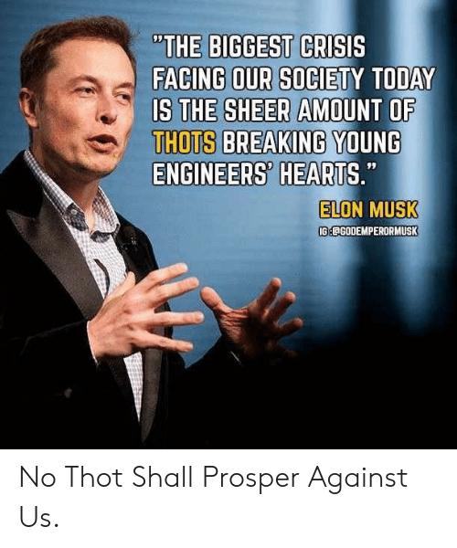 "Reddit, Thot, and Hearts: ""THE BIGGEST CRISIS  FACING OUR SOCIETY TODAY  IS THE SHEER AMOUNT OF  THOTS BREAKING YOUNG  ENGINEERS' HEARTS.""  ELON MUSK  99  IGECGODEMPERORMUSK No Thot Shall Prosper Against Us."