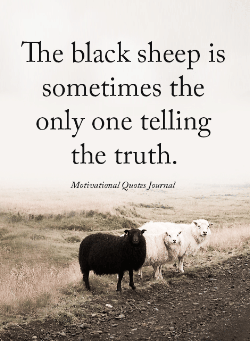 Truthful: The black sheep is  sometimes the  only one telling  the truth.  Motivational Quotes Journal
