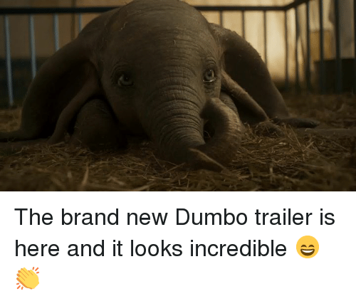 Dumbo: The brand new Dumbo trailer is here and it looks incredible 😄👏