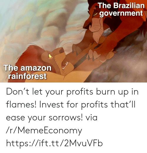 Amazon, Brazilian, and Government: The Brazilian  government  The amazon  rainforest Don't let your profits burn up in flames! Invest for profits that'll ease your sorrows! via /r/MemeEconomy https://ift.tt/2MvuVFb