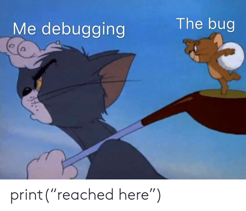 "Reached: The bug  Me debugging print(""reached here"")"