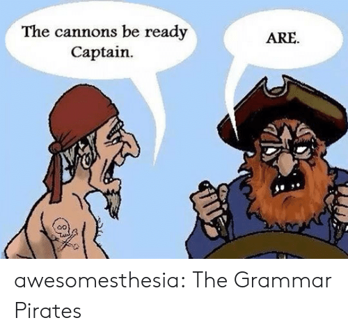 Tumblr, Blog, and Pirates: The cannons be ready  Captain  ARE awesomesthesia:  The Grammar Pirates