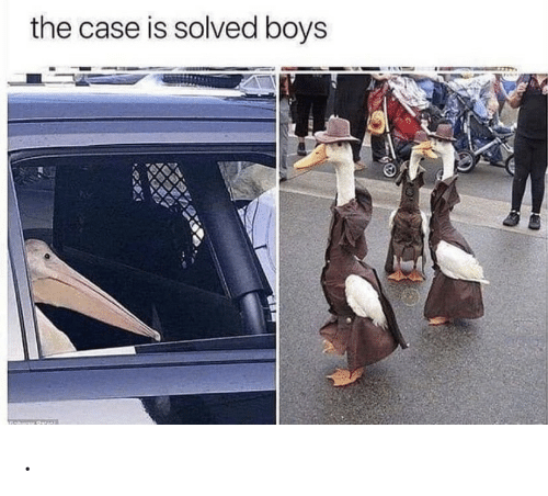 Boys, Case, and The: the case is solved boys .