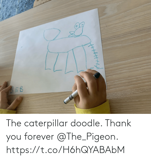 Doodle: The caterpillar doodle. Thank you forever @The_Pigeon. https://t.co/H6hQYABAbM