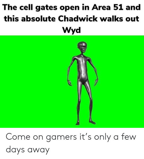 Reddit, Wyd, and Area 51: The cell gates open in Area 51 and  this absolute Chadwick walks out  Wyd Come on gamers it's only a few days away