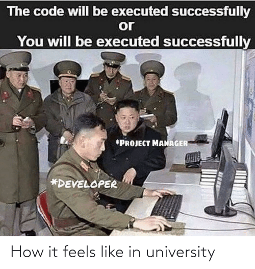 the code: The code will be executed successfully  or  You will be executed successfully  *PROJECT MANAGER  *DEVELOPER How it feels like in university