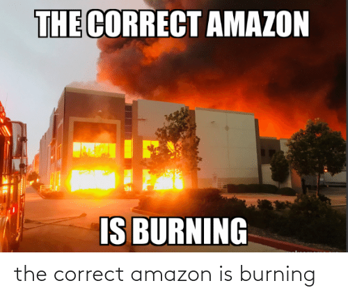 burning: the correct amazon is burning