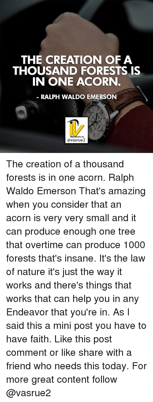 acorn: THE CREATION OF A  THOUSAND FORESTS IS  IN ONE ACORN  RALPH WALDO EMERSON  @vasrue2 The creation of a thousand forests is in one acorn. Ralph Waldo Emerson That's amazing when you consider that an acorn is very very small and it can produce enough one tree that overtime can produce 1000 forests that's insane. It's the law of nature it's just the way it works and there's things that works that can help you in any Endeavor that you're in. As I said this a mini post you have to have faith. Like this post comment or like share with a friend who needs this today. For more great content follow @vasrue2