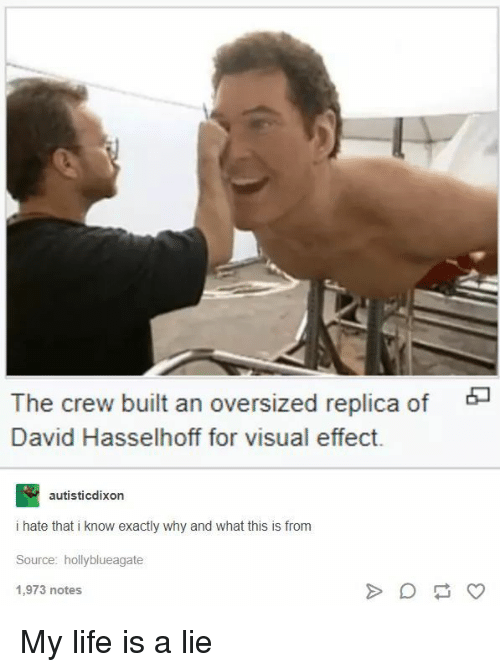 Life, The Crew, and David Hasselhoff: The crew built an oversized replica of  David Hasselhoff for visual effect.  autisticdixon  i hate that i know exactly why and what this is from  Source: hollyblueagate  1,973 notes My life is a lie