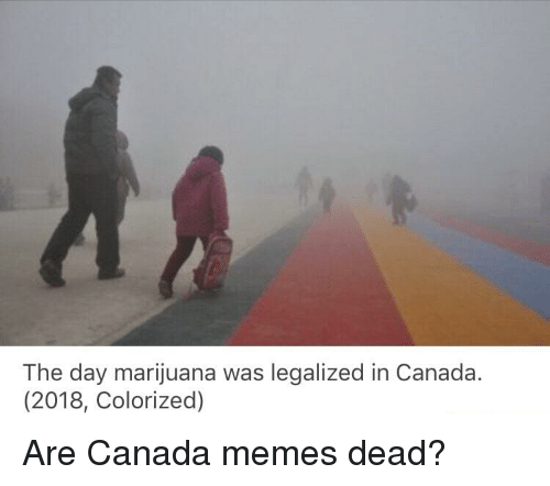 Canada Memes: The day marijuana was legalized in Canada.  (2018, Colorized)