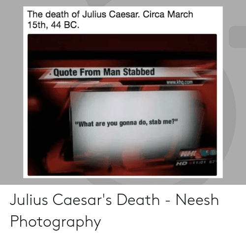 "Caesars Death: The death of Julius Caesar. Circa March  15th, 44 BC.  . Quote From Man Stabbed  www.khg.com  ""What are you gonna do, stab me?""  HDETIOY 8 Julius Caesar's Death - Neesh Photography"