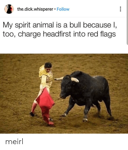 Animal, Dick, and Spirit: the.dick.whisperer Follow  My spirit animal is a bull because I,  too, charge headfirst into red flags meirl