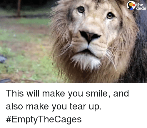 Teared Up: the  dodo  ed This will make you smile, and also make you tear up.  #EmptyTheCages