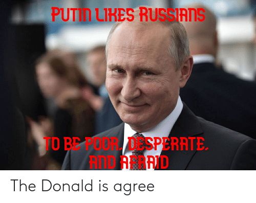 The Donald: The Donald is agree