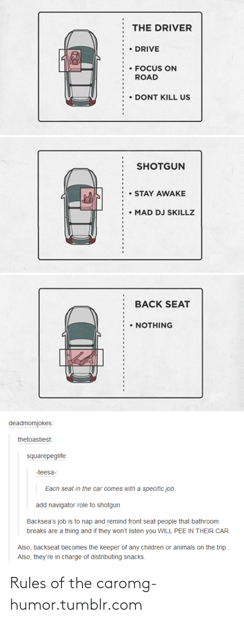 Backseat: THE DRIVER  DRIVE  • FOCUS ON  ROAD  DONT KILL US  SHOTGUN  STAY AWAKE  • MAD DJ SKILLZ  BACK SEAT  • NOTHING  deadmomjokes:  thetoastiest:  squarepeglife:  -teesa-:  Each seat in the car comes with a specific job.  add navigator role to shotgun  Backsea's job is to nap and remind front seat people that bathroom  breaks are a thing and if they won't listen you WILL PEE IN THEIR CAR.  Also, backseat becomes the keeper of any children or animals on the trip.  Also, they're in charge of distributing snacks. Rules of the caromg-humor.tumblr.com