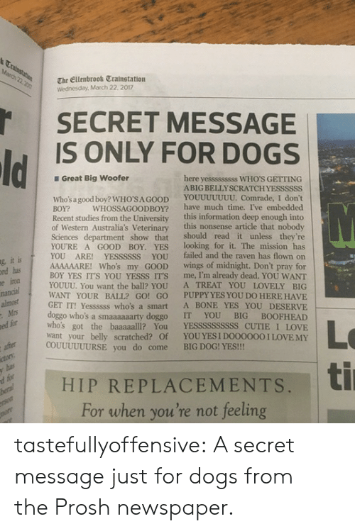 big dog: The Ellenbrook Trainstation  Wednesday, March 22. 2017  SECRET MESSAGE  IS ONLY FOR DOGS  Great Big Woofer  here yesssssssss WHO'S GETTING  ABIG BELLYSCRATCHYESSSSSS  Who's a good boy? WHO'SA GOOD YOUUUUUUU. Comrade, I don't  BOY? WHOSSAGOODBOY? have much time. I've embedded  Recent studies from the University this information deep enough into  of Western Australia's Veterinary this nonsense article that nobody  Sciences department show that should read it unless they're  YOURE A GOOD BOY. YES looking for it. The mission has  YOU ARE! YESSSSSS YOU failed and the raven has flown on  AAAAAARE! Who's my GOOD wings of midnight. Don't pray for  BOY YES IT'S YOU YESSS IT'S me, I'm already dead. YOU WANT  YOUUU. You want the ball? YOU A TREAT YOU LOVELY BIG  WANT YOUR BALL? GO! GO PUPPY YES YOU DO HERE HAVIE  GET IT! Yessssss who's a smart A BONE YES YOU DESERVE  doggo who's a smaaaaaarty doggo IT YOU BIG BOOFHEAD  who's got the baaaaalll? You YESSSSSSSSSS CUTIE I LOVE  want your belly scratched? Of YOUYES I DOO0000 I LOVEMY  ic  g, it  rd has  ed for  COUUUUUURSE you do come BIG DOG! YES!!!  | HIP REPLACEMENTS, ti  d for  For when you're not feeling tastefullyoffensive: A secret message just for dogs from theProshnewspaper.