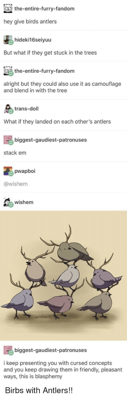 Birds, Tree, and Trees: the-entire-furry-fandom  hey give birds antlers  hideki16seiyuu  But what if they get stuck in the trees  the-entire-furry-fandom  alright but they could also use it as camouflage  and blend in with the tree  trans-doll  What if they landed on each other's antlers  biggest-gaudiest-patronuses  stack em  pwapboi  @wishem  wishem  wishem  biggest-gaudiest-patronuses  i keep presenting you with cursed concepts  and you keep drawing them in friendly, pleasant  ways, this is blasphemy Birbs with Antlers!!