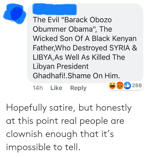 """Obama, Black, and Syria: The Evil """"Barack Obozo  Obummer Obama"""", The  Wicked Son Of A Black Kenyan  Father,Who Destroyed SYRIA &  LIBYA,As Well As Killed The  Libyan President  Ghadhafi!.Shame On Him.  288  Like Reply  14h Hopefully satire, but honestly at this point real people are clownish enough that it's impossible to tell."""