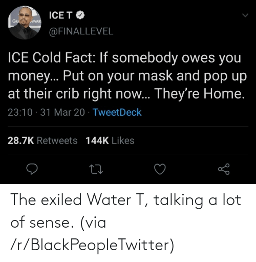 talking: The exiled Water T, talking a lot of sense. (via /r/BlackPeopleTwitter)