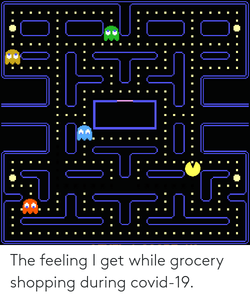 The Feeling: The feeling I get while grocery shopping during covid-19.