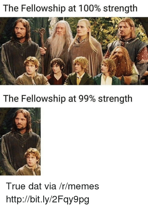 fellowship: The Fellowship at 100% strength  The Fellowship at 99% strength  12 True dat via /r/memes http://bit.ly/2Fqy9pg