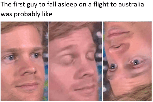 Fall Asleep: The first guy to fall asleep on a flight to australia  was probably like