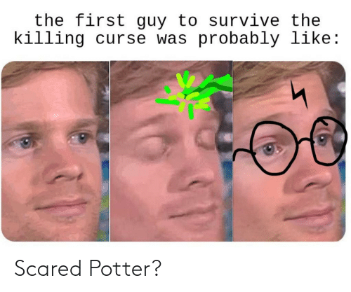 The Killing, Potter, and First: the first guy to survive the  killing curse was probably like: Scared Potter?
