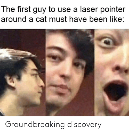 discovery: The first guy to use a laser pointer  around a cat must have been like: Groundbreaking discovery