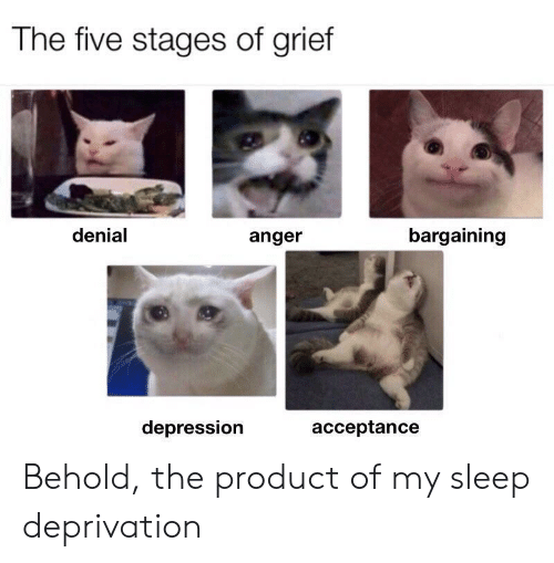 Grief: The five stages of grief  denial  bargaining  anger  depression  acceptance Behold, the product of my sleep deprivation