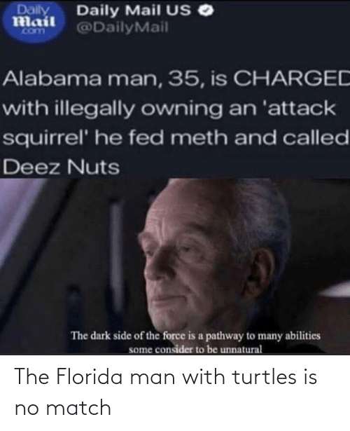 Florida: The Florida man with turtles is no match