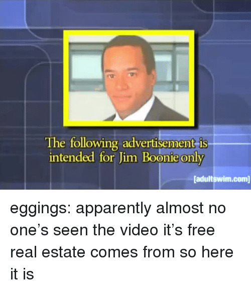 Apparently, Tumblr, and Blog: The following advertisement is  intended for Jim Boonie only  adultswim.com eggings: apparently almost no one's seen the video it's free real estate comes from so here it is