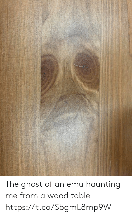 Haunting: The ghost of an emu haunting me from a wood table https://t.co/SbgmL8mp9W