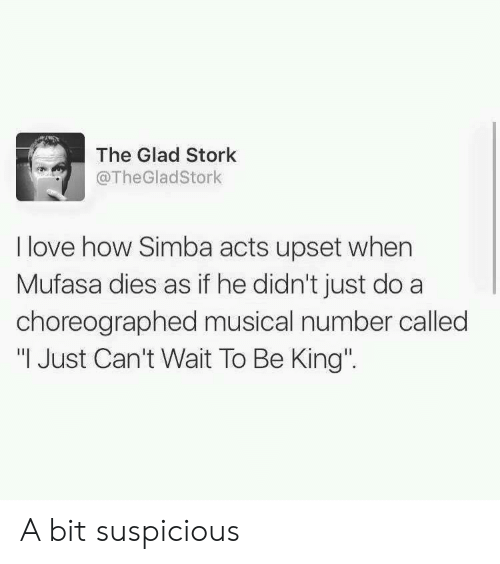 """Love, Mufasa, and How: The Glad Stork  @TheGladStork  I love how Simba acts upset when  Mufasa dies as if he didn't just do a  choreographed musical number called  """"I Just Can't Wait To Be King' A bit suspicious"""