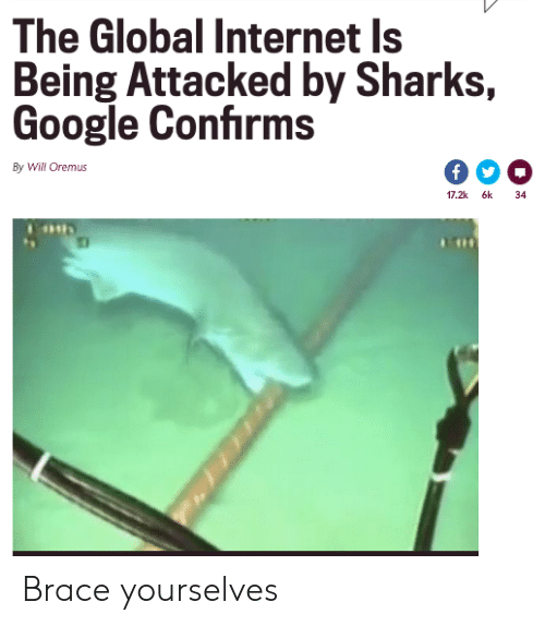 Sharks: The Global Internet Is  Being Attacked by Sharks,  Google Confirms  By Will Oremus  17.2k 6k  34 Brace yourselves