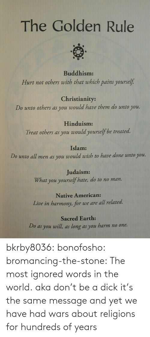 The Golden Rule: The Golden Rule  Buddhism:  Hurt not others with that which pains yourself.  Christianity:  Do unto others as you would have them do unto you.  Hinduism:  Treat others as you would yourself be treated.  Islam:  Do unto all men as you would wish to have done unto you.  Judaism:  What you yourself hate, do to no man.  Native American:  Live in harmony, for we are all related.  Sacred Earth:  Do as you will, as long as you harm no one. bkrby8036:  bonofosho:  bromancing-the-stone:  The most ignored words in the world.  aka don't be a dick  it's the same message and yet we have had wars about religions for hundreds of years