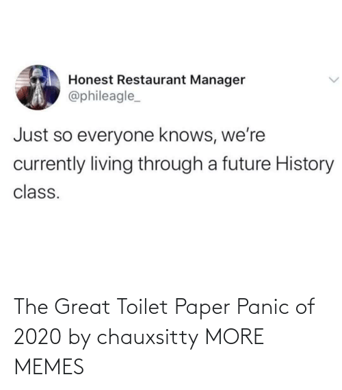 toilet: The Great Toilet Paper Panic of 2020 by chauxsitty MORE MEMES
