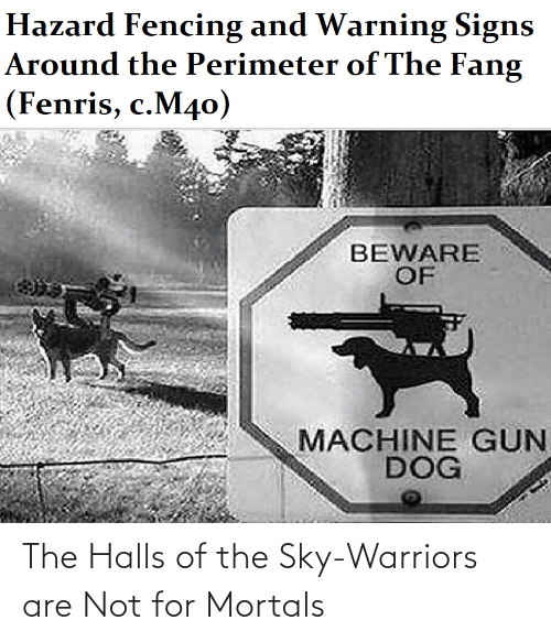 Are Not: The Halls of the Sky-Warriors are Not for Mortals