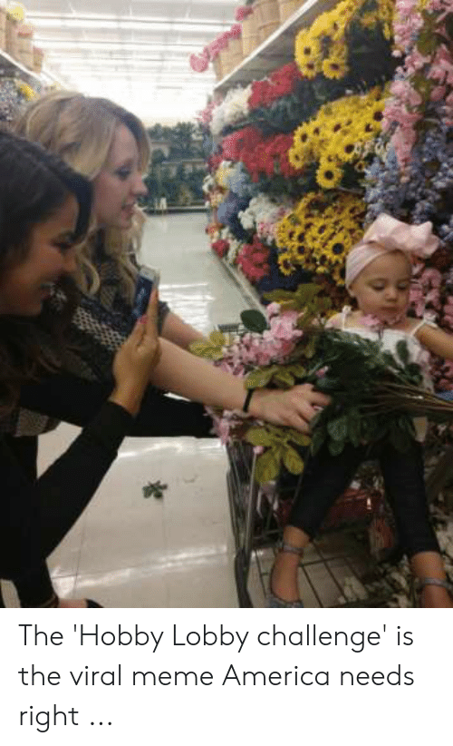 Lobby Challenge: The 'Hobby Lobby challenge' is the viral meme America needs right ...