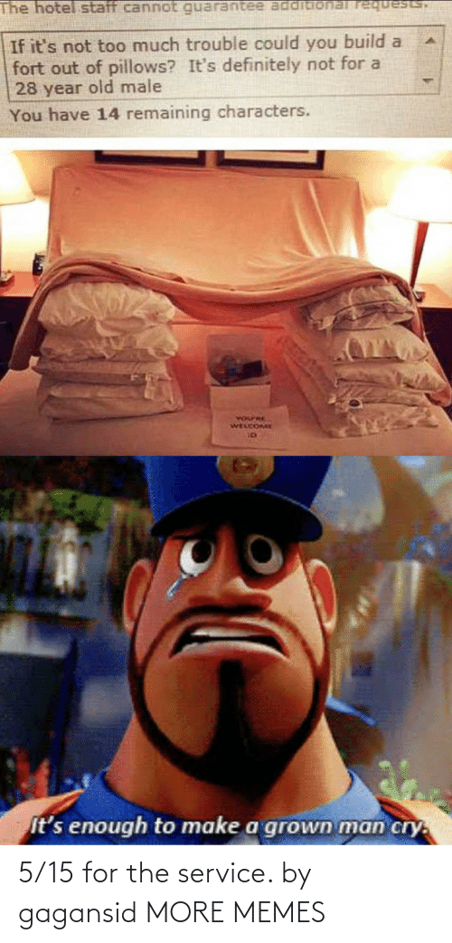Hotel: The hotel staff cannot requests,  If it's not too much trouble could you build a  fort out of pillows? It's definitely not for a  28 year old male  You have 14 remaining characters.  YOurRE  WELCOME  It's enough to make a grown man cry. 5/15 for the service. by gagansid MORE MEMES