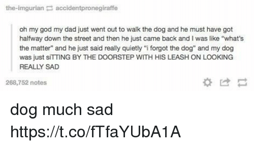 """Imgurian: the-imgurian accidentpronegiraffe  oh my god my dad just went out to walk the dog and he must have got  halfway down the street and then he just came back and I was like """"what's  the matter"""" and he just said really quietly """"i forgot the dog"""" and my dog  was just sITTING BY THE DOORSTEP WITH HIS LEASH ON LOOKING  REALLY SAD  268,752 notes dog much sad https://t.co/fTfaYUbA1A"""