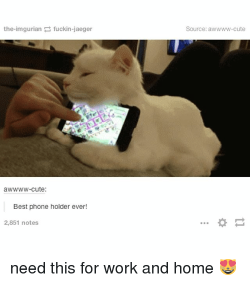 Imgurian: the imgurian fuckin-jaeger  awwww-cute:  Best phone holder ever!  2,851 notes  Source: a need this for work and home 😻