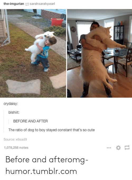 Imgurian: the-imgurian sarahsarahpearl  crydaisy:  blshiit:  BEFORE AND AFTER  The ratio of dog to boy stayed constant that's so cute  Source: x6sad9  1,078,258 notes Before and afteromg-humor.tumblr.com