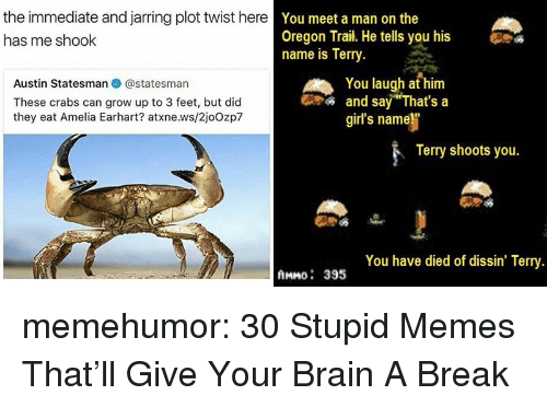 "Stupid Memes: the immediate and jarring plot twist here  has me shook  You meet a man on the  Oregon Trail. He tells you his  name is Terry.  Austin Statesman@statesman  These crabs can grow up to 3 feet, but did  they eat Amelia Earhart? atxne.ws/2joOzp7  You laugh at him  and say ""That's a  girl's name  Terry shoots you.  You have died of dissin' Terry  AMMO: 395 memehumor:  30 Stupid Memes That'll Give Your Brain A Break"