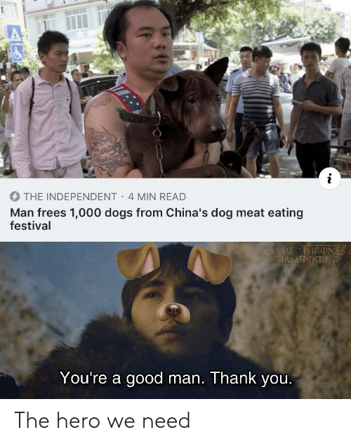 Dogs, Thank You, and Good: THE INDEPENDENT 4 MIN READ  Man frees 1,000 dogs from China's dog meat eating  festival  MEOHRONES  SHAMΕΡ) ΤΙΝΟ  You're a good man. Thank you. The hero we need