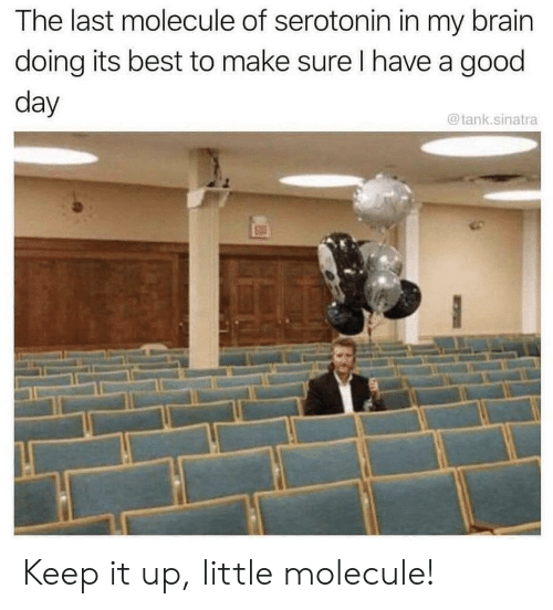 Best, Brain, and Good: The last molecule of serotonin in my brain  doing its best to make sure I have a good  day  @tank.sinatra Keep it up, little molecule!