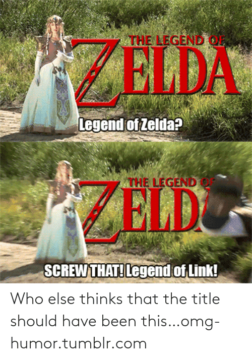 Zeld: THE LEGEND OF  ZELDA  Legend of Zelda?  THE LEGEND o  ZELD  SCREW THAT! Legend of Link! Who else thinks that the title should have been this…omg-humor.tumblr.com