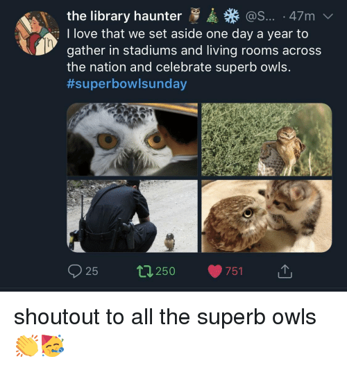 Love, Library, and Sunday: the library haunter  I love that we set aside one day a year to  gather in stadiums and living rooms across  the nation and celebrate superb owls.  #superbow!sunday  @S... 47m  25 250 751 1, shoutout to all the superb owls👏🥳