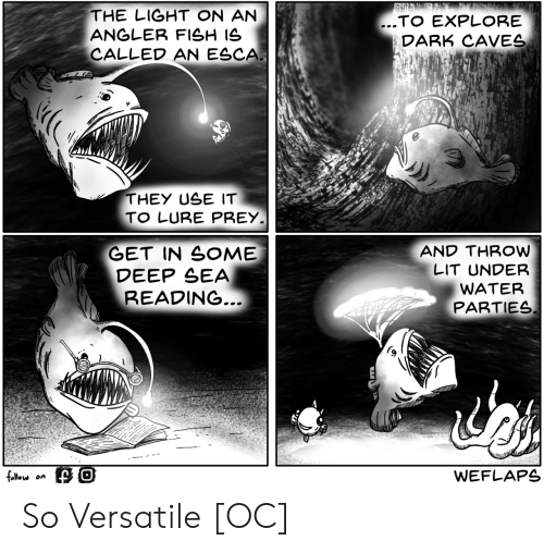 lure: THE LIGHT ON AN  ANGLER FISH IS  CALLED AN ESCA  ..TO EXPLORE  DARK CAVES  THEY USE IT  TO LURE PREY  GET IN SOME  DEEP SEA  AND THROW  LIT UNDER  WATER  PARTIES  READING  follou on  WEFLAPS So Versatile [OC]